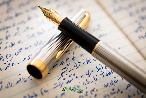 Parker Pen